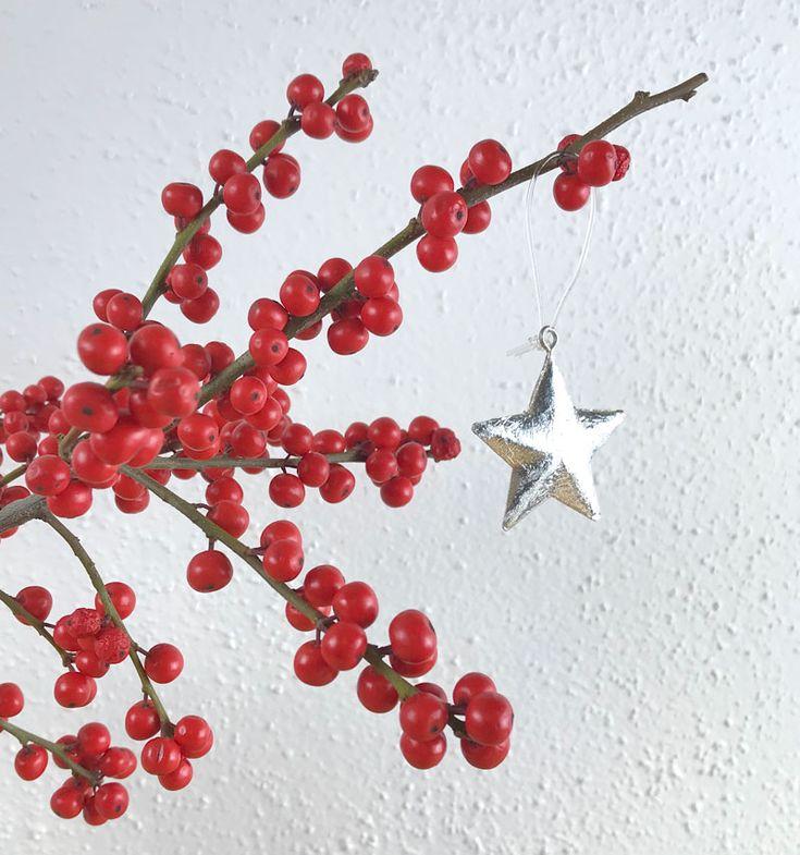die besten 25 rote beeren ideen auf pinterest weihnachtsblumen urlaub dekorieren und. Black Bedroom Furniture Sets. Home Design Ideas