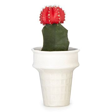 Look what I found at UncommonGoods: Ice Cream Cone Mini Planter for $24 #uncommongoods
