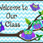 "This $2.00 sign will look so cute on your classroom door, whether or not you have an owl themed classroom! The poster is 11"" x 17"" and has beautiful, bright colors. Here's the best part...  You can get your poster personalized with your name (see 2nd preview) by emailing me your name with your purchase date. Email me (information and address is in the file) and I'll email your personalized poster back to you!"