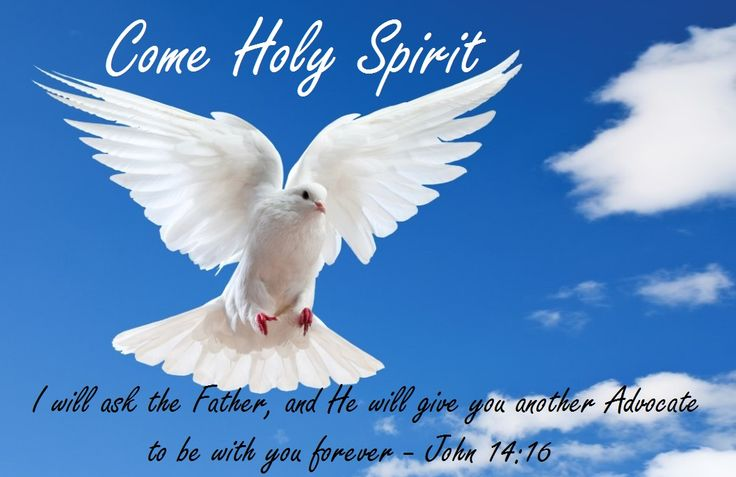 Jesus Promises the Holy Spirit I will ask the Father, and He will give you another Advocate to be with you forever - John 14:16 - Audio Bible - https://www.biblegateway.com/audio/dramatized/niv/John.14 -  Joyce Meyer - The Help of the Holy Spirit Sermon 2017 https://youtu.be/2KKmBuDwYNM