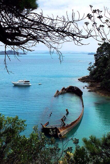 Moturekareka island/ New Zealand