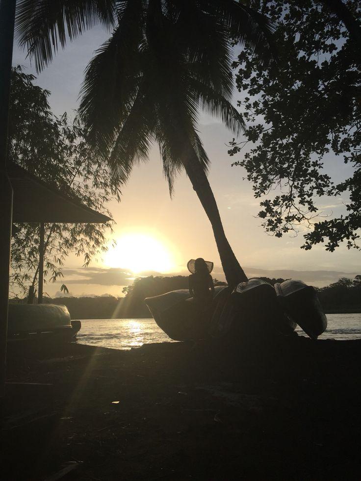 #costarica #tortuguero  Parque Nacional Tortuguero  Costa Rica Downtown