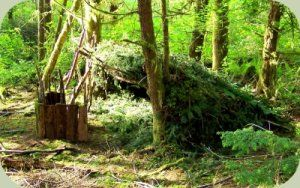 Understanding how to create effective wilderness survival shelters is one of the most important outdoor skills. From keeping you protected from the elements to providing a place to rest, wilderness shelters serve a key role in survival situations.
