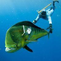 Гидрокостюм для подводной охоты APNEA 5мм