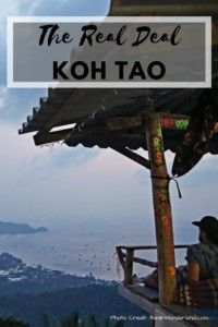 The Real Deal About Koh Tao.  Heading to Koh Tao?  You must read this guide first! #kohtao #kohtaotips