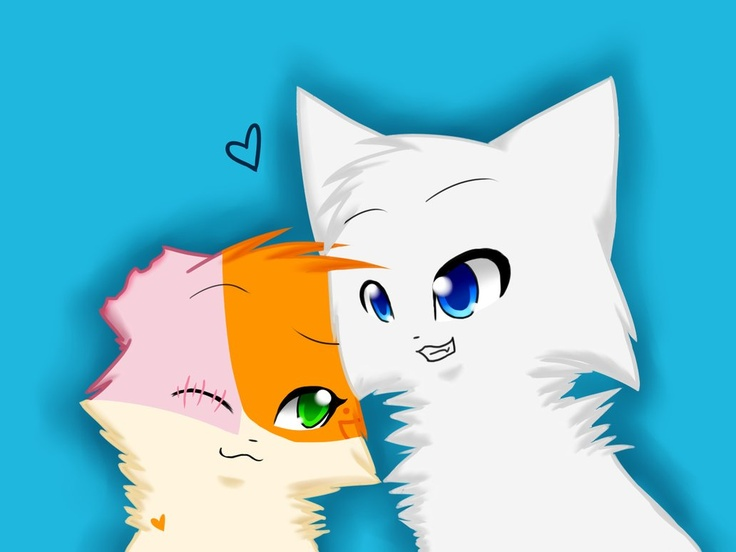 51 Best Warrior Cats Images On Pinterest