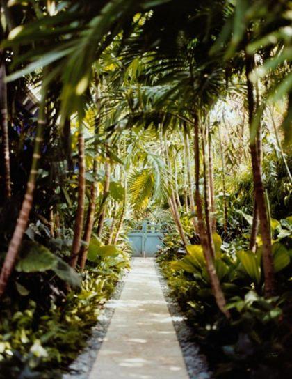 25+ Best Ideas About Tropical Garden Design On Pinterest