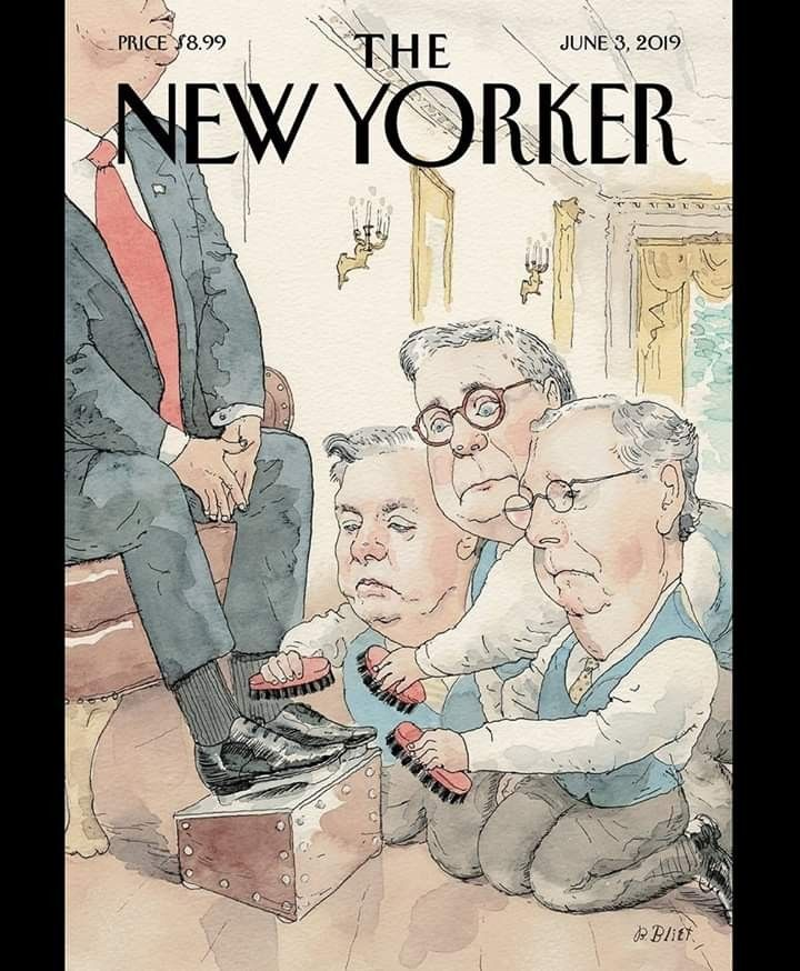 Pin by Bob Hickman on POLITICIZE The new yorker, New