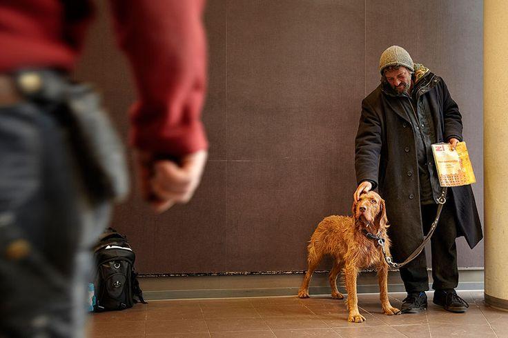 A lealdade de um cachorro ao seu dono é algo realmente inabalável. Não importa quem seja, como seja, como se veste ou onde morre, a amizade desses animais é sempre pura e linda.