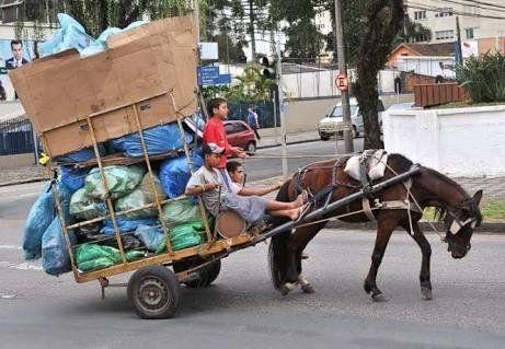 Petition · Vereadores de Palmeira das Missões e Prefeito: Pelo fim da escravidão de cavalos em Palmeira das Missões Rio Grande do Sul · Change.org