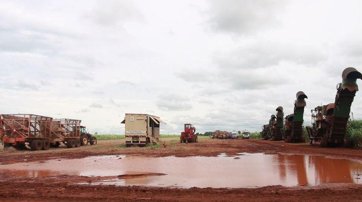 Guaira Sugar Refinery