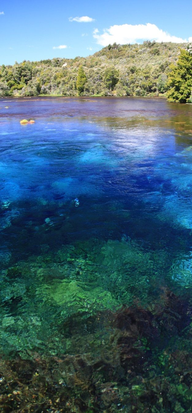 The Te Waikoropupu Springs ('Pupu Springs') - Located in Golden Bay on New Zealand's South Island, Pupu Springs is considered to have the clearest spring water in the world.