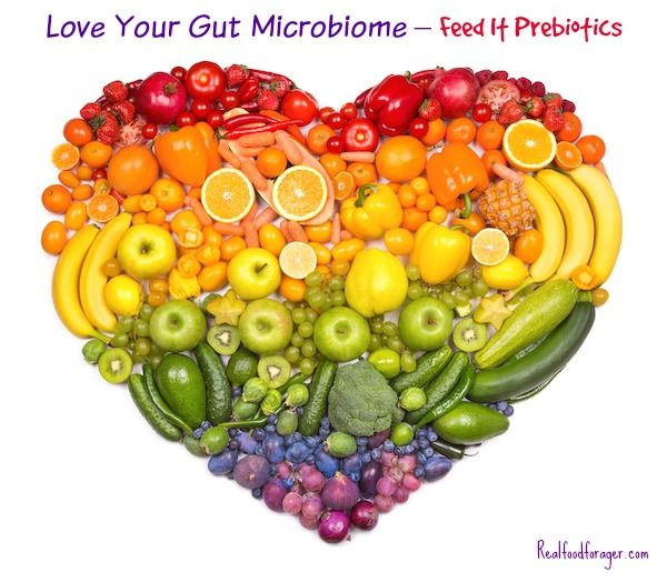 Love Your Gut Microbiome – Feed It Prebiotics