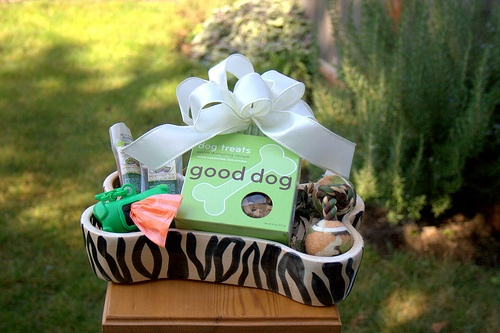 """And Your Little Dog Too"" Gift Basket to raffle off for an Oz fundraiser event."