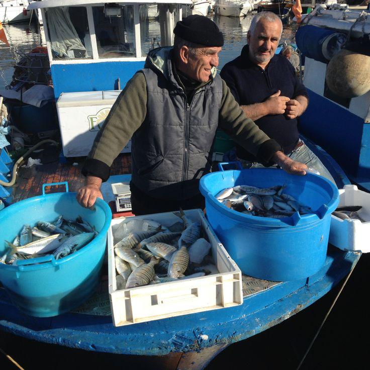 fish market food tour Pozzuoli, Naples, Italy