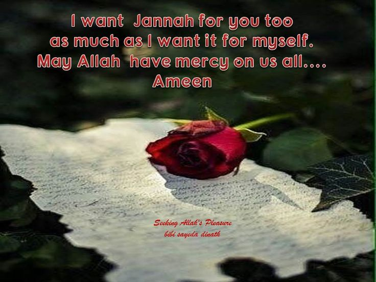 I want Jannah for you too as much as I want it for myself.  May Allah have mercy on us all....Ameen