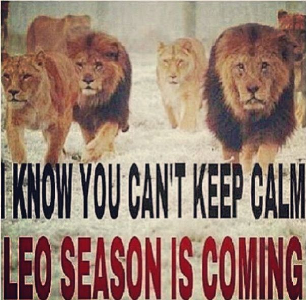 Leo season is coming!! Shits gonna hit the fan soon! Haha Leo quote.