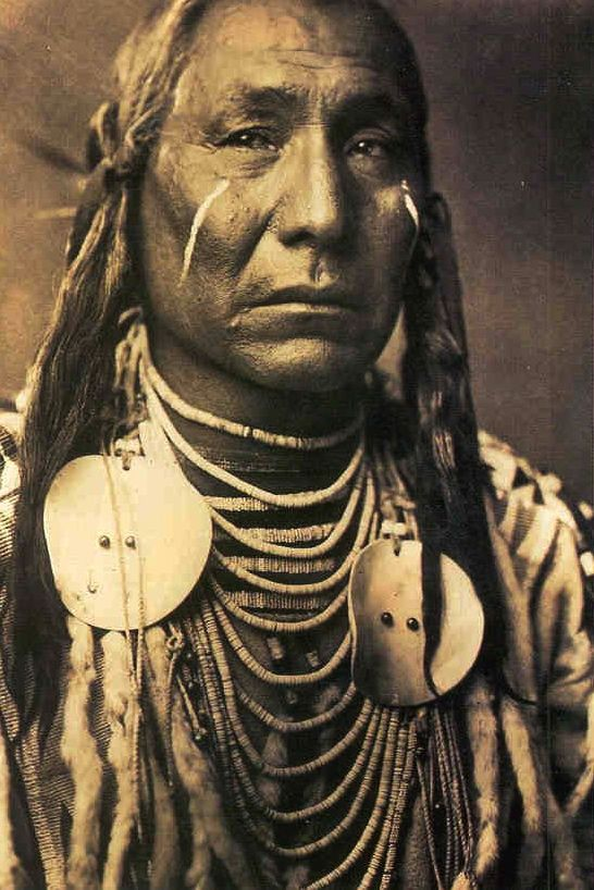 Image native facial half american red