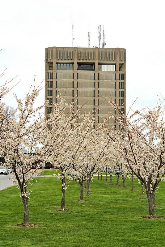 Brock University Tower by jocelyntitone, via Flickr