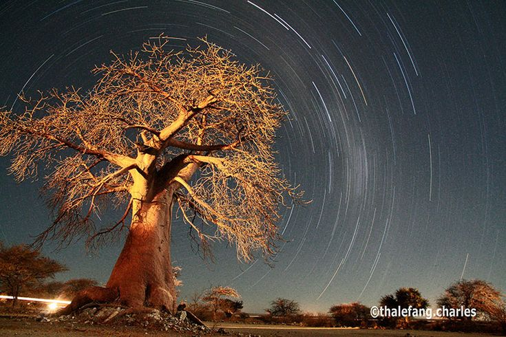 Time exposure photos at Makgadikgadi Pans