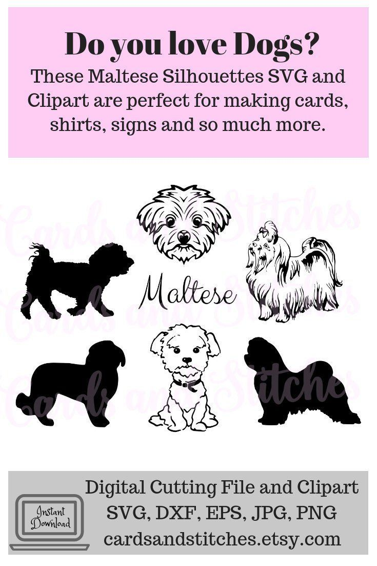 these maltese silhouettes svg digital cutting file and clipart are perfect for making cards signs shirts glass blocks and so much more  [ 735 x 1102 Pixel ]