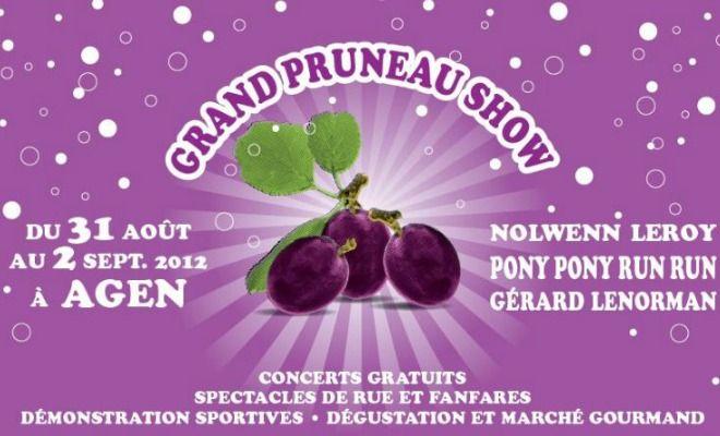 Concert, atelier, théâtre, gastronomie et exposition rythmeront les trois jours du festival d'Agen, le Grand Pruneau Show, qui a lieu du 31 août au 2 septembre.