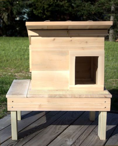 Best Protection From Predators Outdoor Cat Shelter