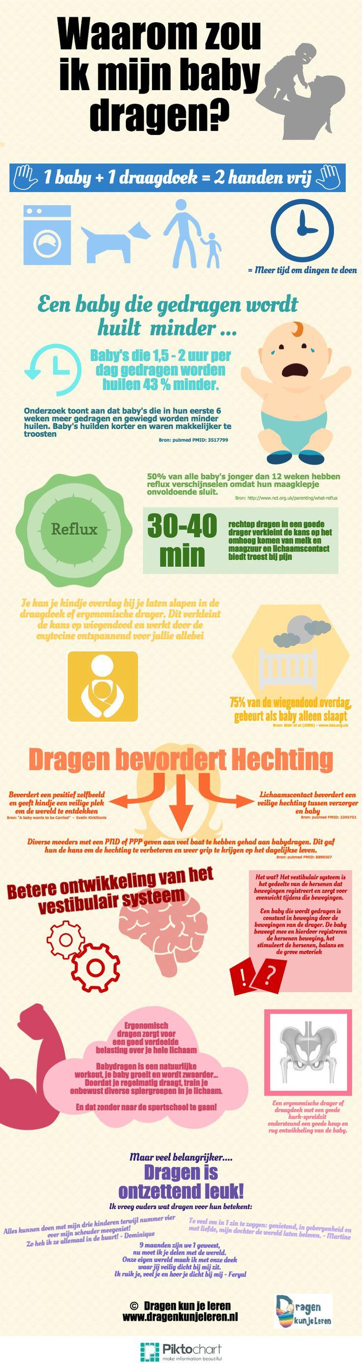 Nederlandse Infographic over de voordelen van dragen - made by www.dragenkunjeleren.nl