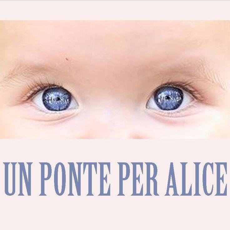 La storia di Alice, bimba di 11 mesi affetta da Leucemia… - Seguici su nursetimes.org - Giornale di informazione sanitaria - #NurseTimes