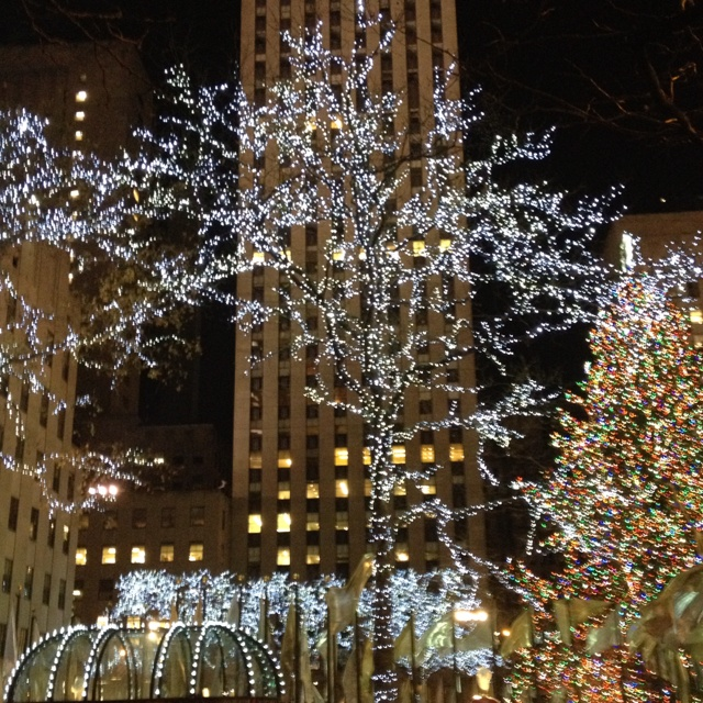 27 best images about nyc winter on pinterest trees sex for Decoration new york