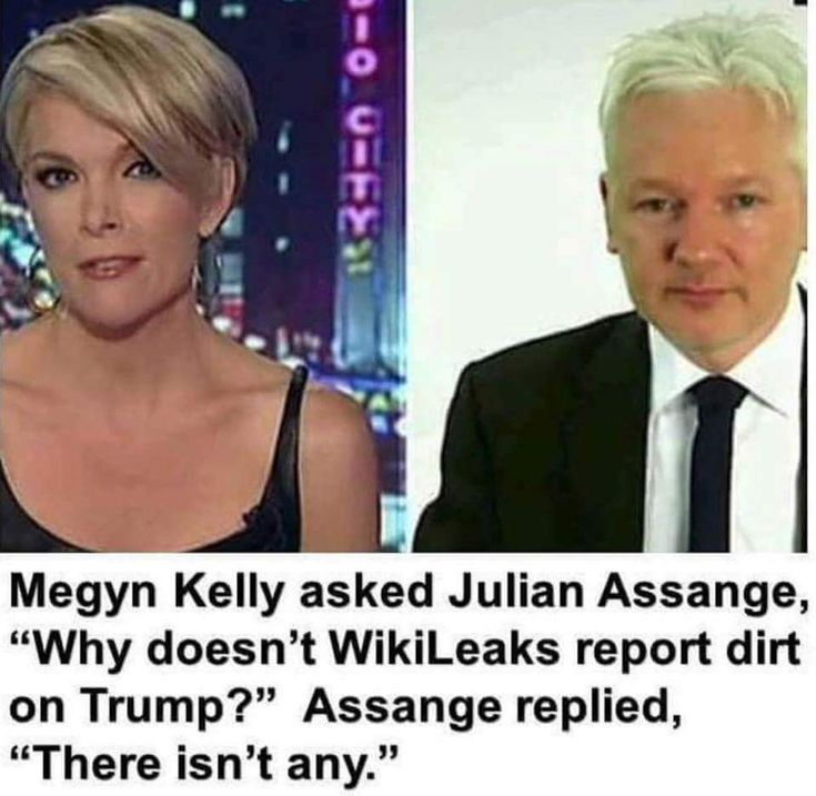 Nothing Wikileaks has ever published has been proven as incorrect. In plain English: Assange = Truth.