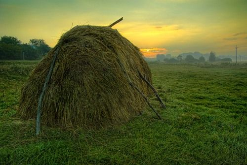 Сударыня — «Раннее утро в деревне!» на Яндекс.Фотках
