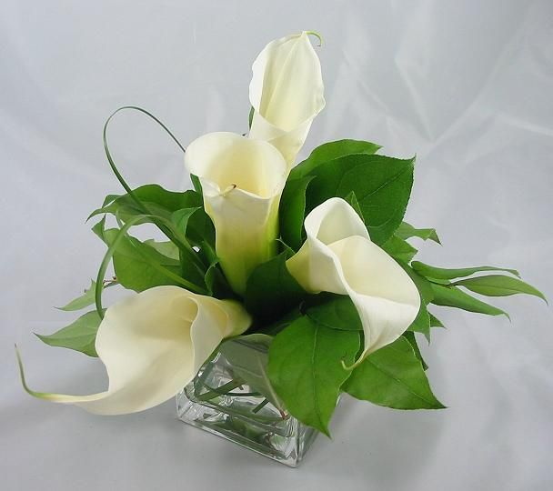 Callas with Bear Grass and Greens. Corporate flowers,  corporate flower centerpiece,  add pic source on comment and we will update it. www.myfloweraffair.com can create this beautiful flower look.