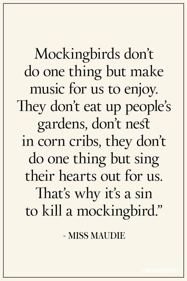 To Kill A Mockingbird Racism Quotes The 25 Best Harper Lee Quotes Ideas On Pinterest  Atticus Finch