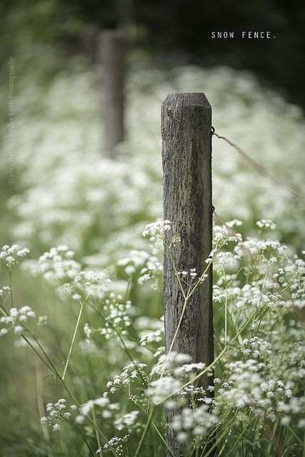 snow fence. | Flickr - Photo Sharing!