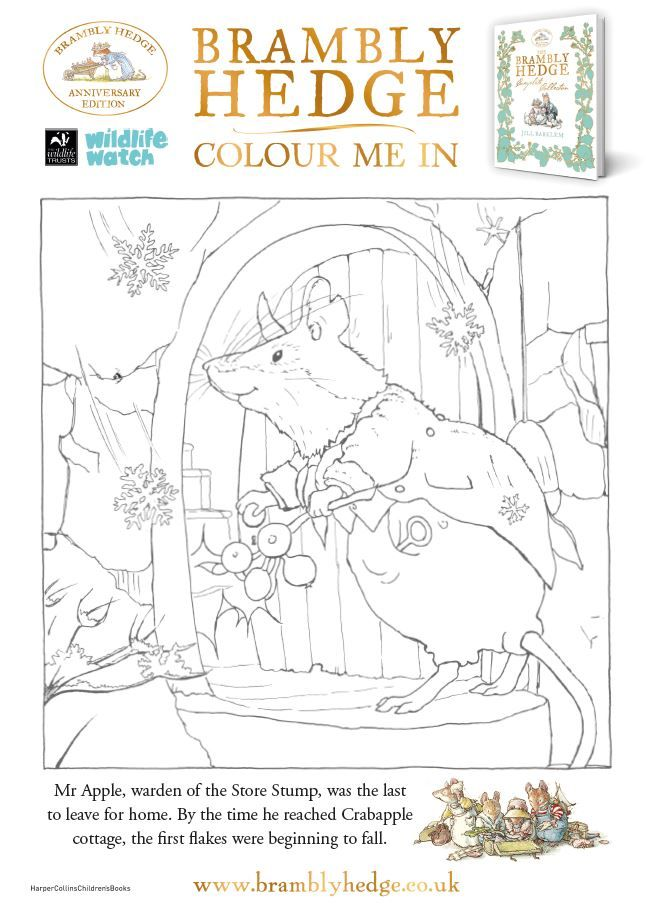 Adult Coloring Of Brambly Hedge From Wildlife Watch