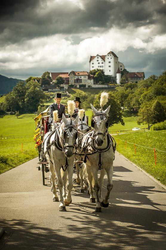 Hochzeitskutsche vor Schloss Wildegg