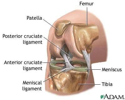 And now I know!  http://www.dralexjimenez.com/acl-tear/