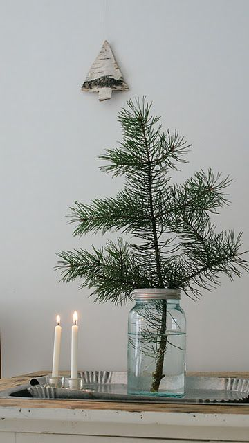 little christmas tree in a mason jar, perfect low maintenance tree for every room in the house