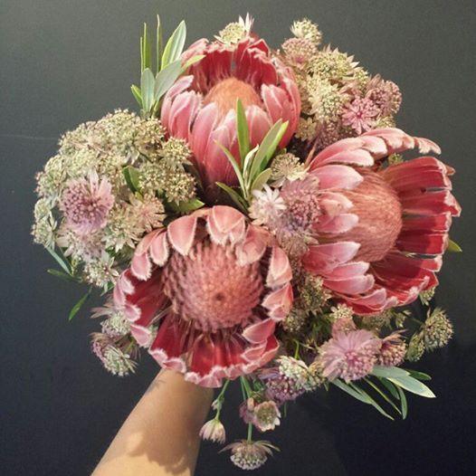 Ramo con astrantias y proteas | Bourguignon Floristas