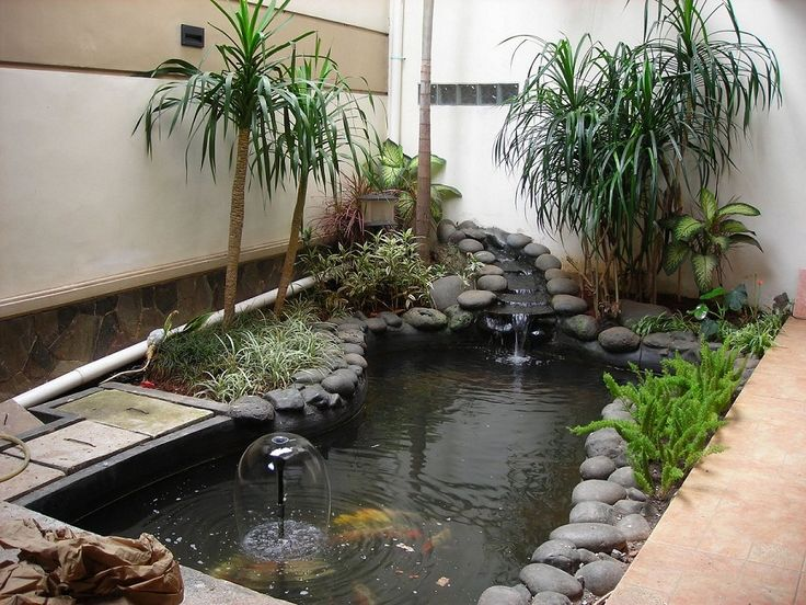1000 ideas about indoor pond on pinterest koi fish pond for Indoor koi pool