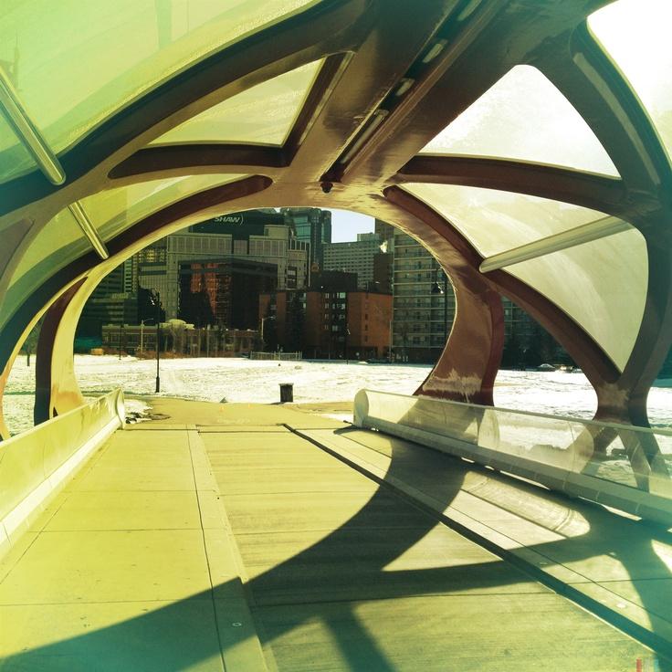 Peace Bridge by Calatrava