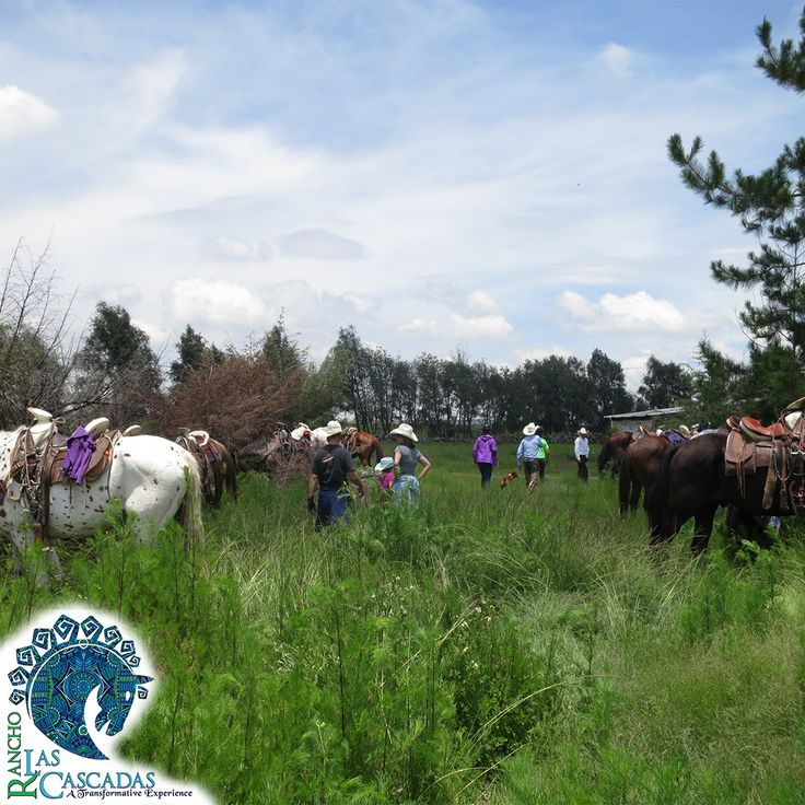 In the heart of Mexico are amazing landscapes. The great mountains, an incredible waterfall, colorful markets, colonial towns…. And in the middle of everything is Rancho Las Cascadas, the All-Inclusive Guest Ranch – where you can connect with nature and enjoy ride with horses. Invite your friends and family. Reserve your spot now!