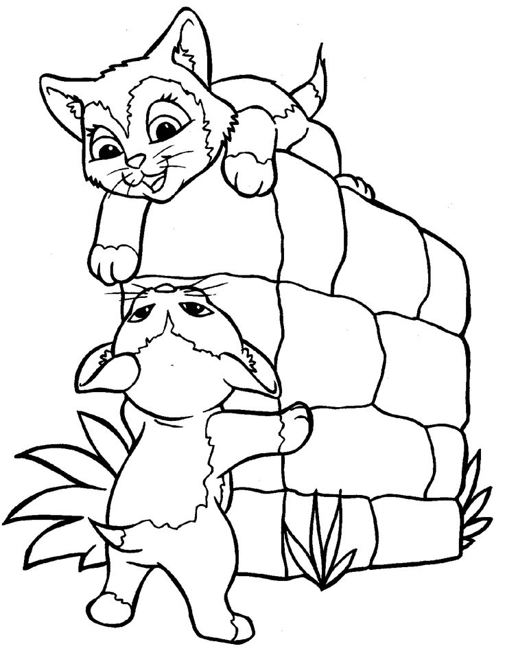 Mejores 21 imágenes de Cats en Pinterest   Libros para colorear ...