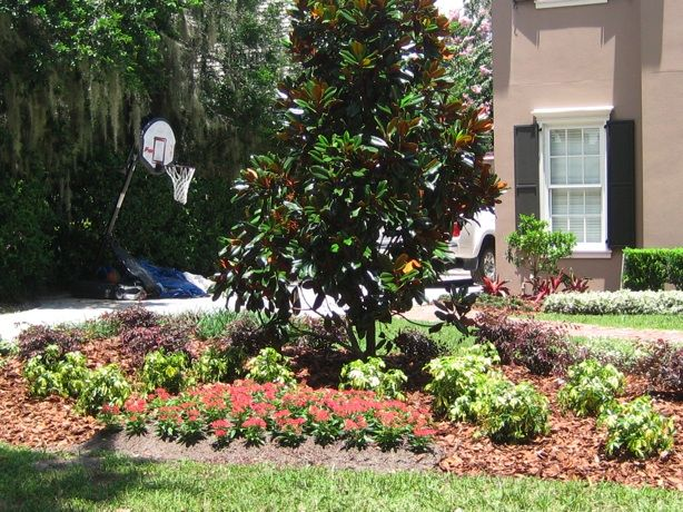 Garden Ideas In Florida 20 best landscaping ideas - zone 9 and 10 florida images on