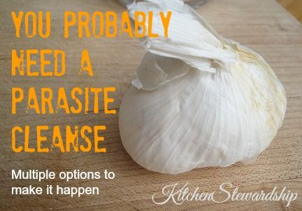 How to do a Parasite Cleanse (children and adults, lots of ideas) :: via Kitchen Stewardship #parasite #naturalhealth