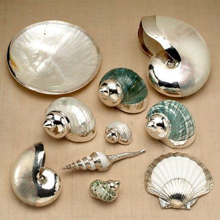 conchas con aplicaciones de plata.                                                                                                                                                                                 Más