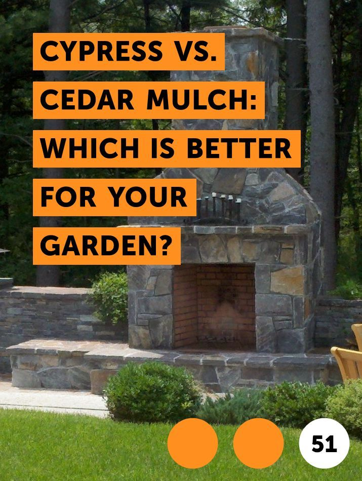 Learn Cypress Vs Cedar Mulch Which Is Better For Your Garden How To Guides Tips And Tricks Small Shrubs Types Of Mulch Corn Plant
