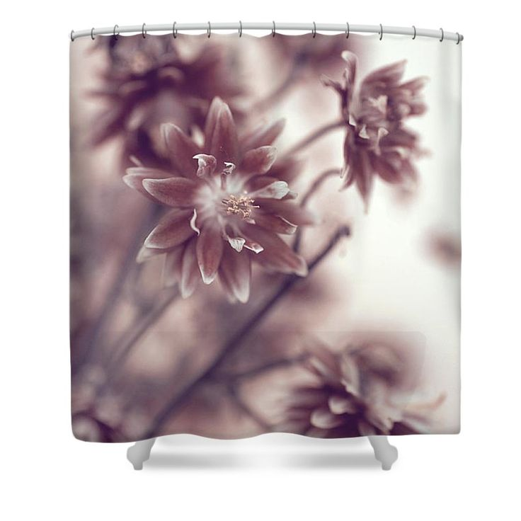 Jenny Rainbow Fine Art Photography Shower Curtain featuring the photograph Eternal Flower Dreams by Jenny Rainbow