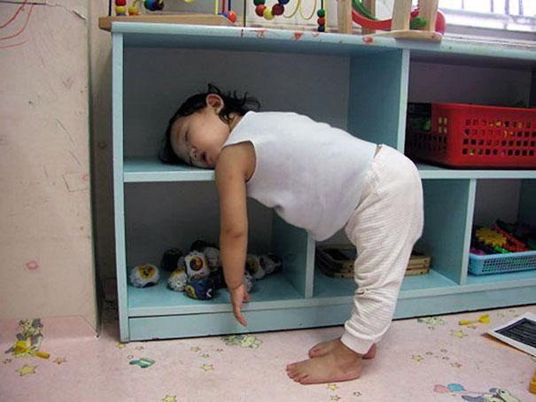Bárhol elszunyókálnak | fotó via boredpanda.com